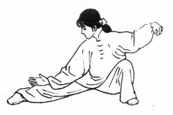 estilos-wushu_WUSHU-TAOLU_WUSHU-SANSHOU_WUSHUSUAIJIAO-250x167