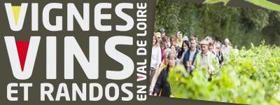 vignes-vins-randos