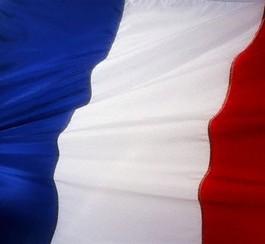 france_flag.44w0pbr7g2kg0cc8wwsc0gwc4.ctghqdwczx4cww8kgok0g0wsc.th