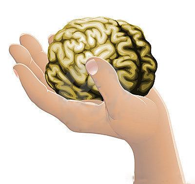 main cerveau