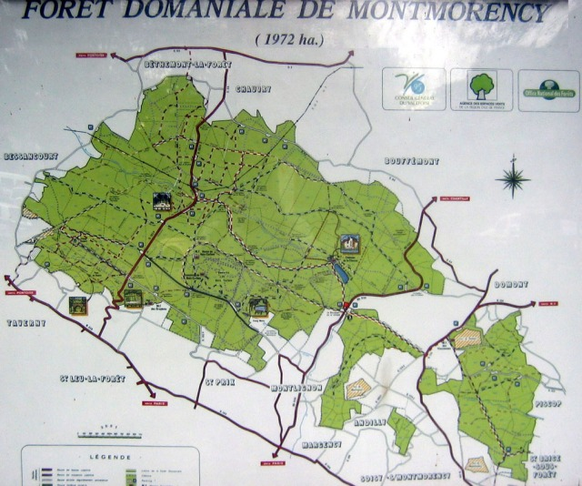 foret_montmorency_plan_foret