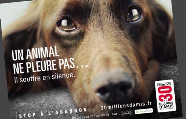 648x415_affiche-nouvelle-campagne-association-30-millions-amis