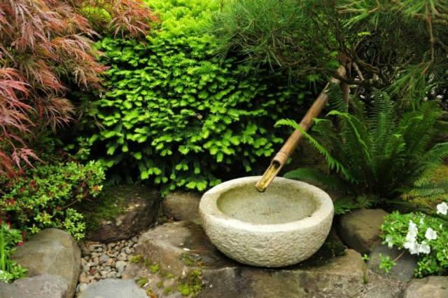 jardin-japonais