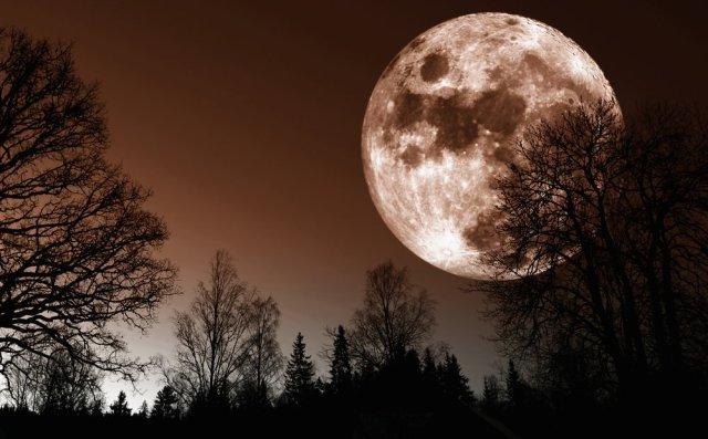 super-lune-14-novembre-2016-1